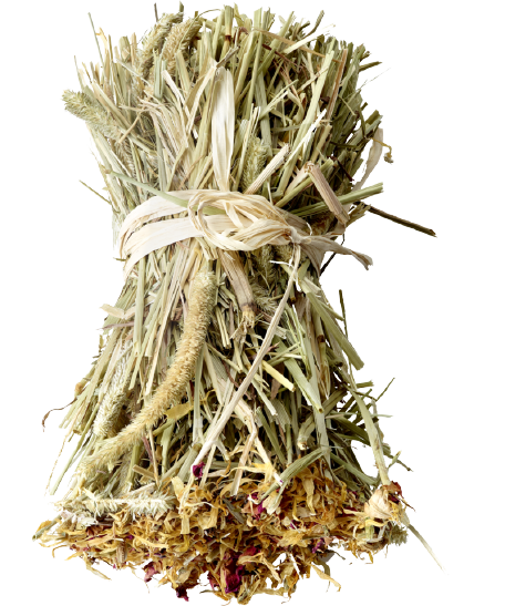 versele-laga nature snack hay bale dandelion 70gr timothy széna jutalomfalat pitypanggal