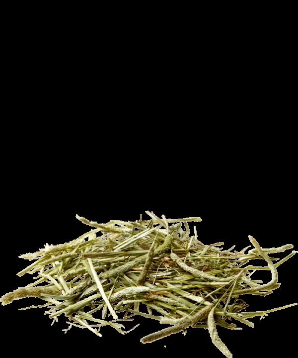 Versele-Laga Nature timothy széna hay 1 kg